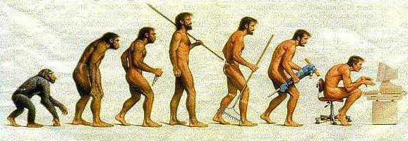 Evolution: Somewhere, something went terribly wrong.